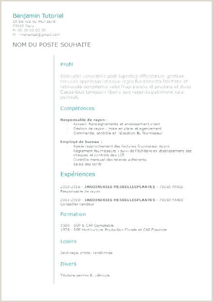 Latest Cv Format Kenya Cv Gestion Administration Nouveau Sample Cv Format Kenya