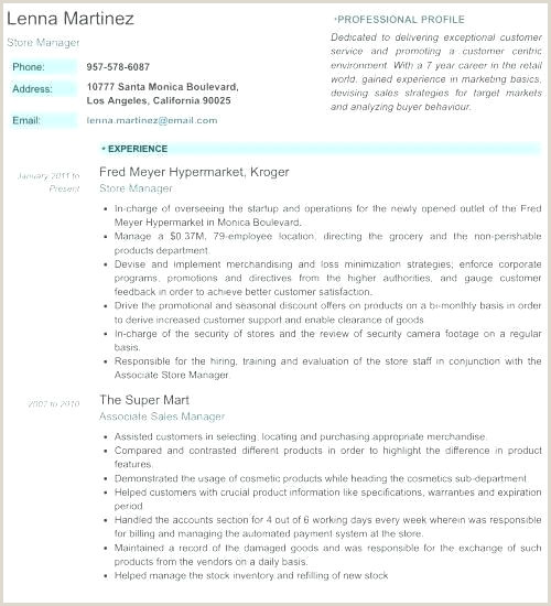 Cv Template Examples Best Professional Resume Template Cv