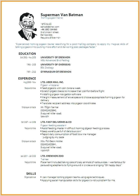 Collection Professional Resume Template Free Download