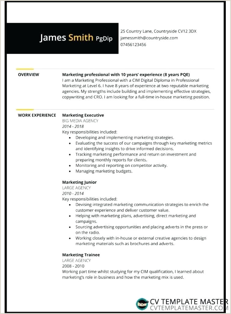 Download A Free Template Curriculum Vitae Design Word