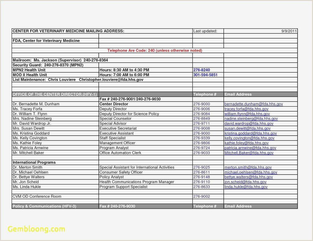 Exemple De Cv A Telecharger élégant Resume Template