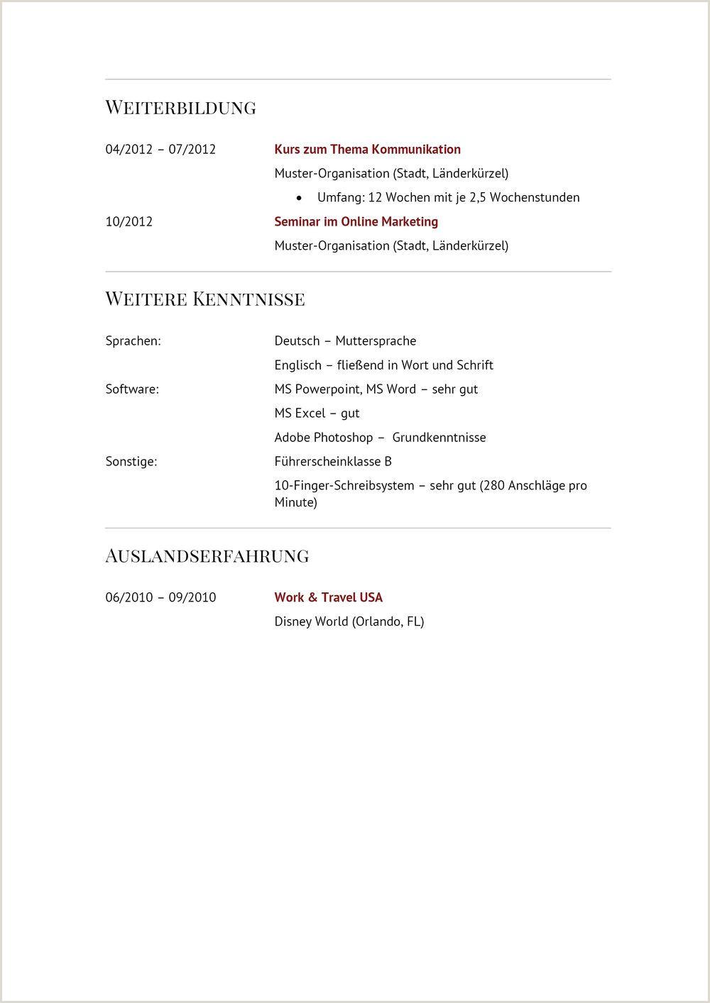 Lebenslauf Cfo Muster 9 10 Es Spezialist Lebenslauf Beispiele