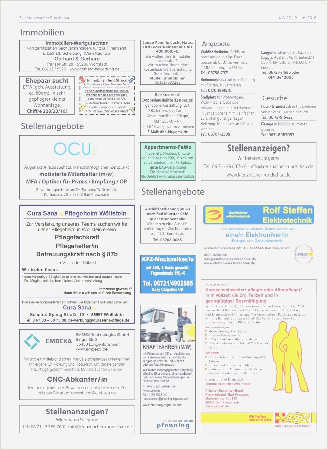 Lebenslauf Chinesisch Muster 15 Professioneller Lebenslauf Vorlage