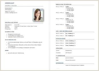 Lebenslauf Jurastudent Muster Föj Jess D Design