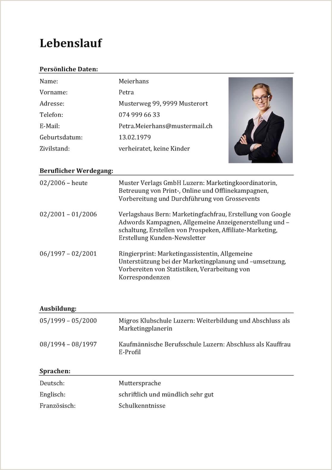 Lebenslauf Muster Beruflicher Werdegang 11 Beruflicher Werdegang Lebenslauf