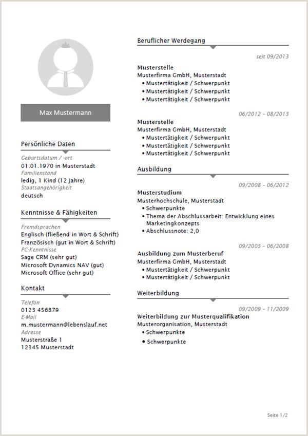 Lebenslauf Muster Beruflicher Werdegang 15 Lebenslauf Mustervorlage