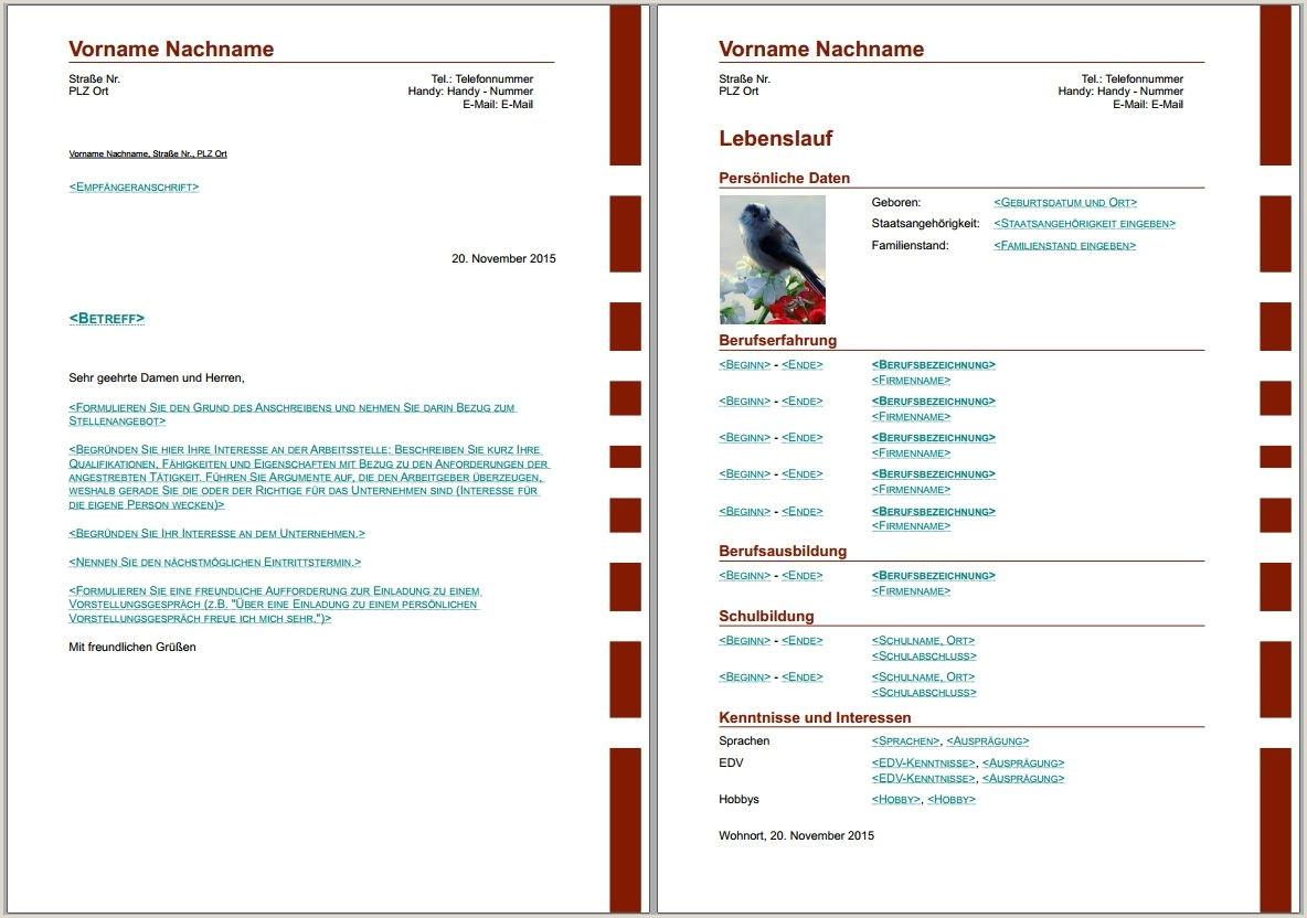 bewerbungsvorlagen für libreoffice Lebenslauf Vorlage Biz
