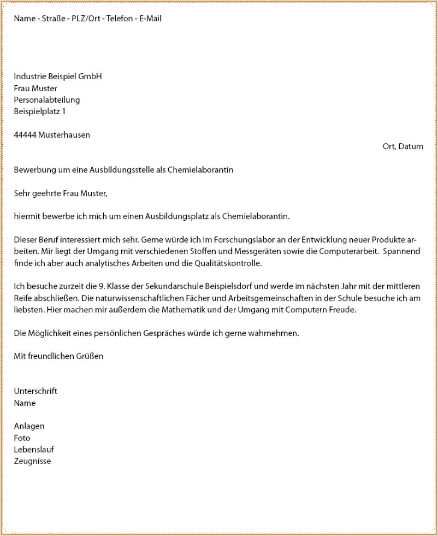 Lebenslauf Muster Bundesagentur Für Arbeit 36 Lebenslauf Für Bewerbung