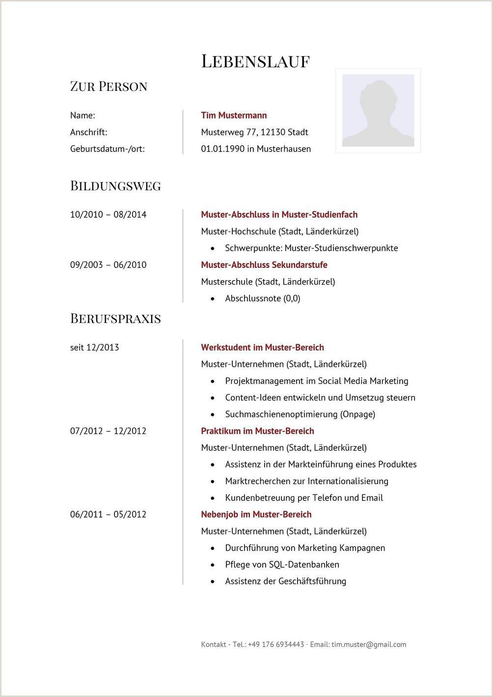 Lebenslauf Muster Edv Kenntnisse 14 Bewerbung Edv Kenntnisse formulierung