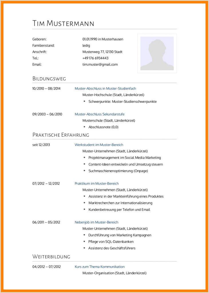 Lebenslauf Muster Einbürgerungsantrag 13 Bewerbung Musterlsung Usfpanhellenic