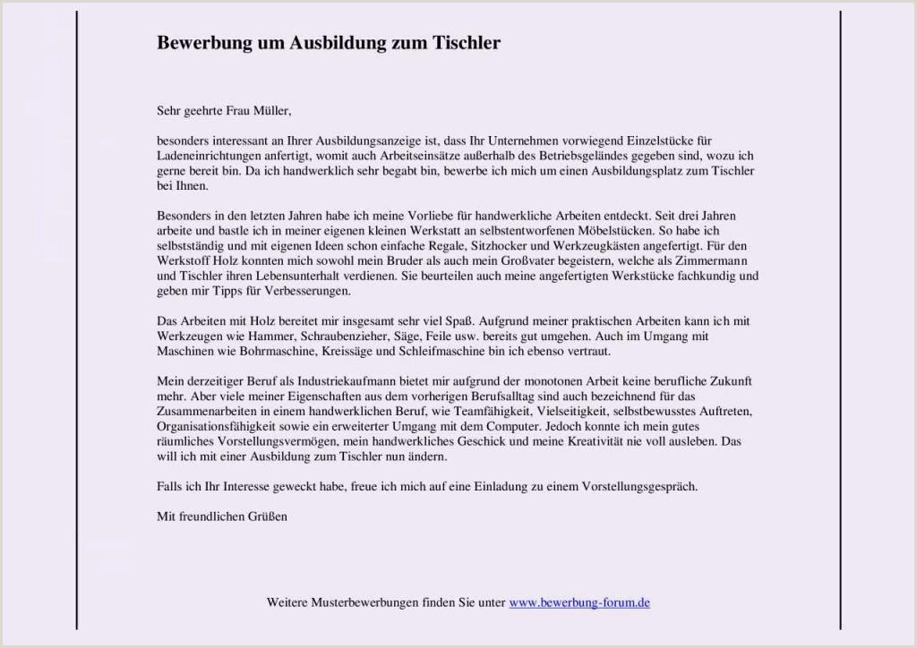 Lebenslauf Muster Für Den Deutschen Pass 10 Bewerbung Muster Altenpflegerin