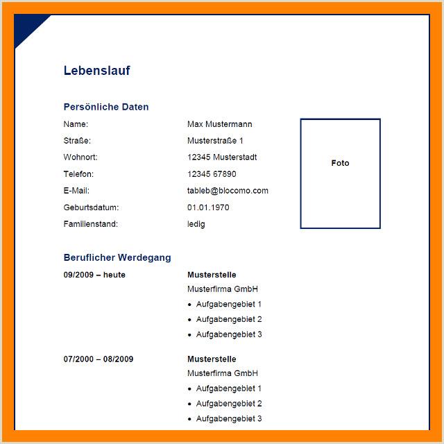 Lebenslauf Muster 2012 name
