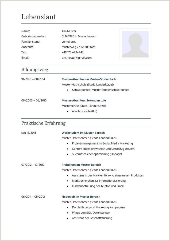 Lebenslauf Muster It Branche 30 Undergraduate Lebenslauf Muster Ausbildung Word Interview