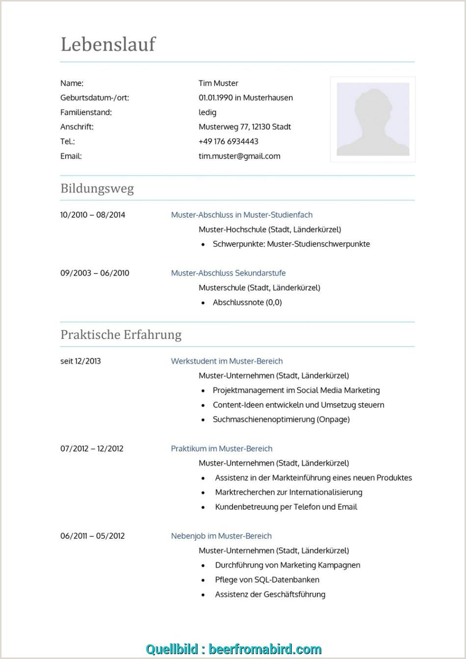 Lebenslauf Muster Jahrespraktikum Komplex 14 Lebenslauf 2016 Vorlage Beerfromabird Muster