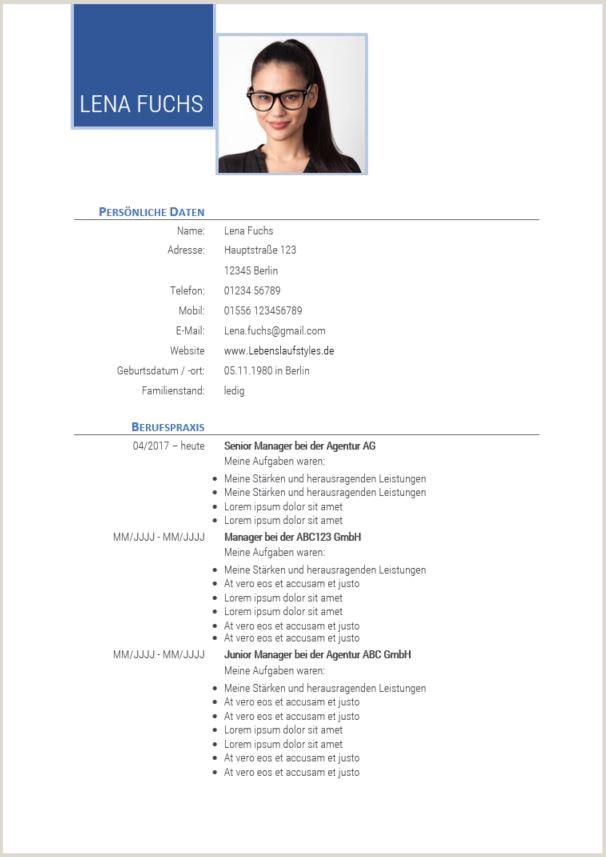 Lebenslauf Muster Schüler Schweiz 1 Mahnung Muster 2019 01