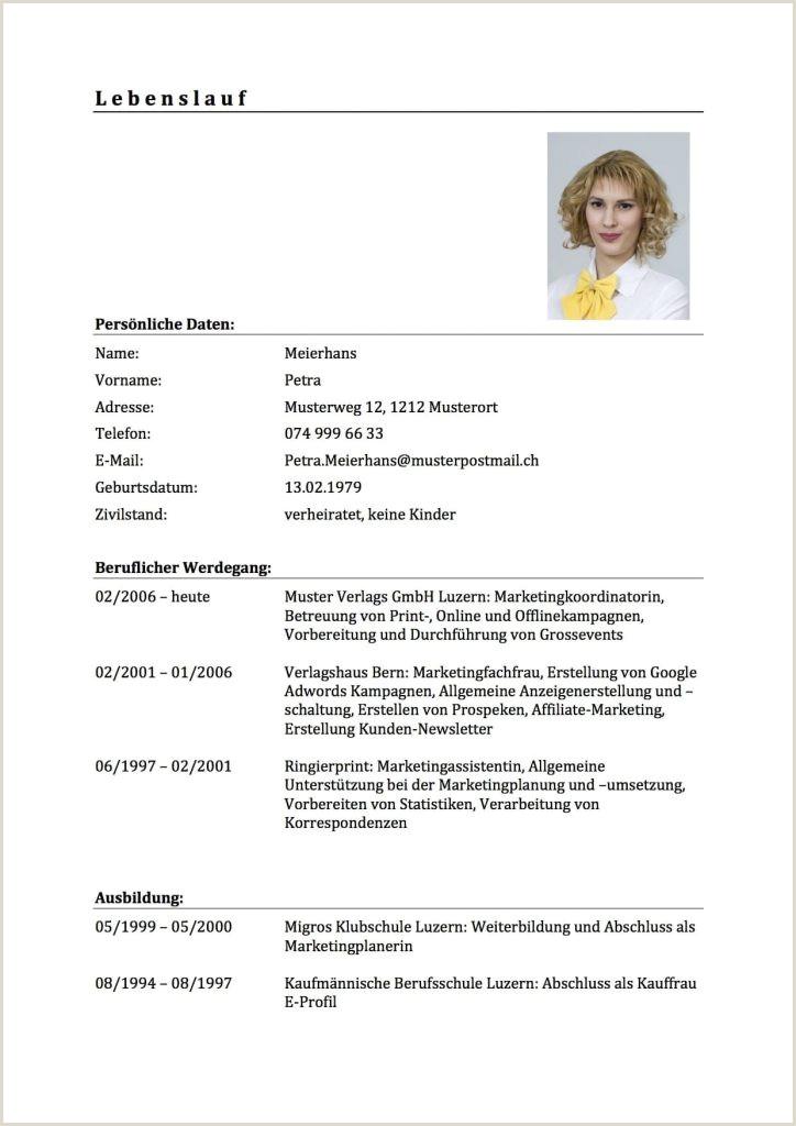 15 initiativbewerbung schweiz muster