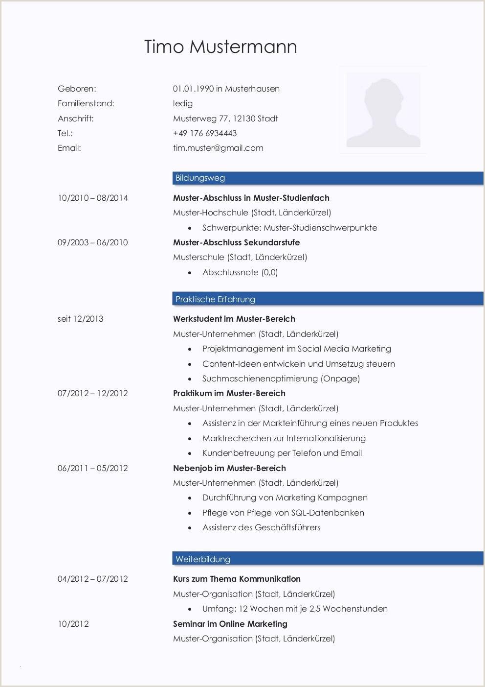 Lebenslauf Muster Studium | myoscommercetemplates.com