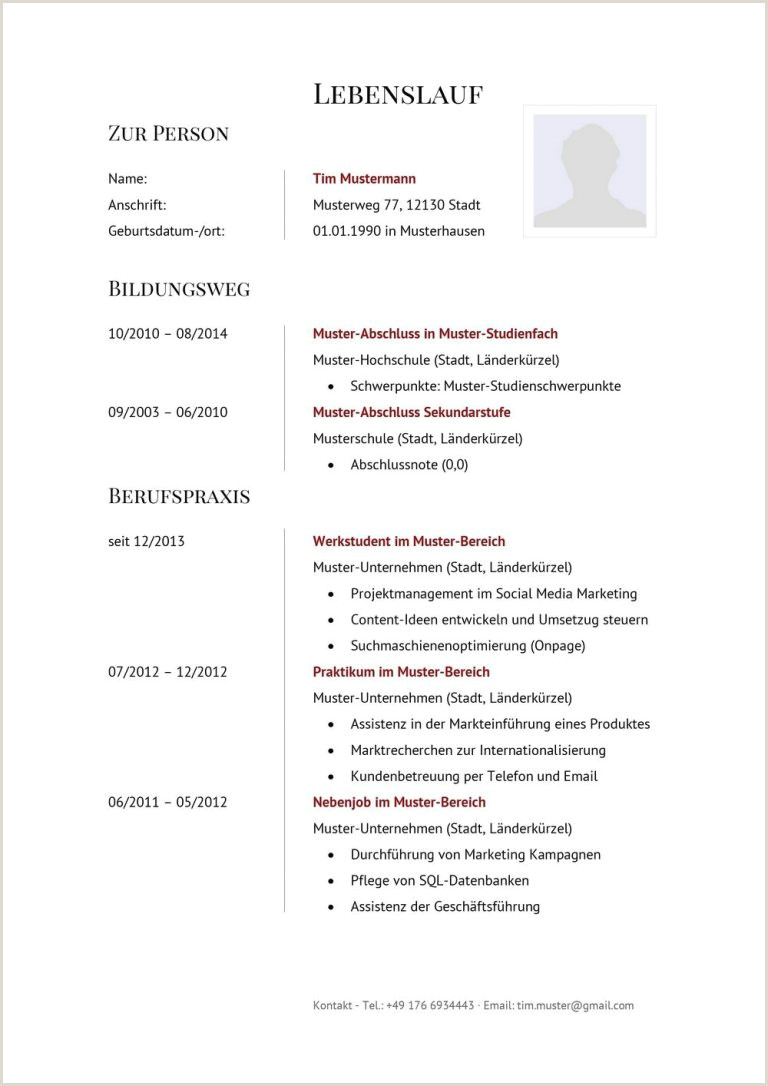 Lebenslauf Muster Vorlage 11 Manager 11 15