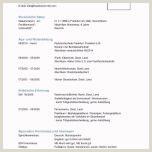 Lebenslauf Muster Voraussichtlicher Abschluss Vorlage Lebenslauf Pdf 49 Methoden Kostenlos Für Sie