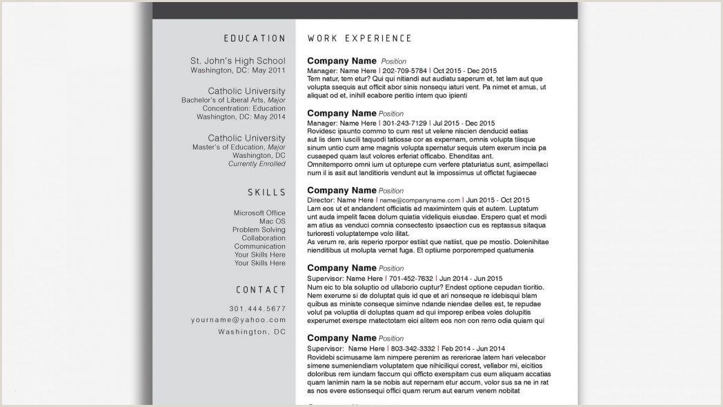 Lebenslauf Muster Word 99 Auto Album Info for Word Lebenslauf Vorlage Kostenlos