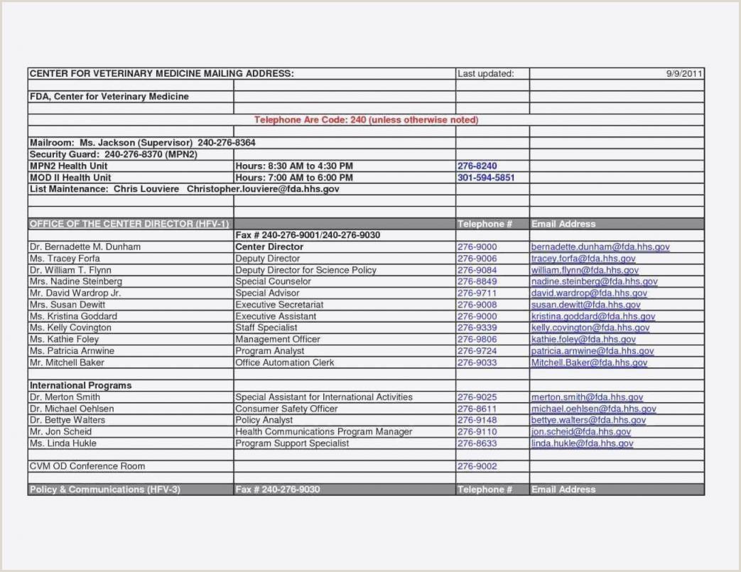 Lebenslauf Muster Word Dokument Frisch Vorlage Bewerbungsschreiben Word Datei