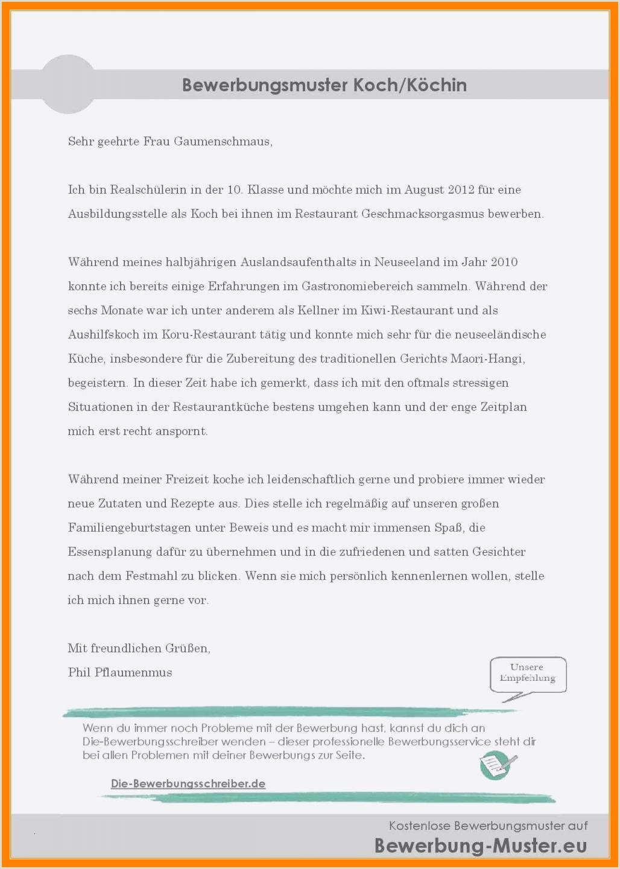 Lebenslauf Vorlage Schüler Schweiz Bewerbungsschreiben