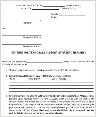 Temporary Custody Template Example Guardianship Letter