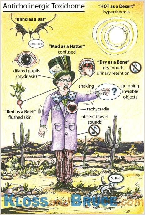 Anticholinergic Toxidrome • LITFL • Toxicology Flashcard Library
