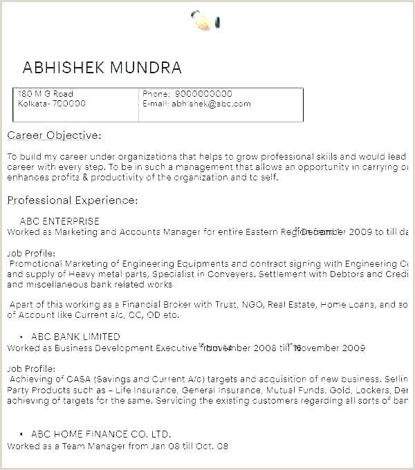 Land Use Agreement Form Developer Agreement Template Joint