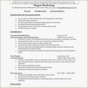 Resume Sample Cashier Archives Wattweiler Org New Resume