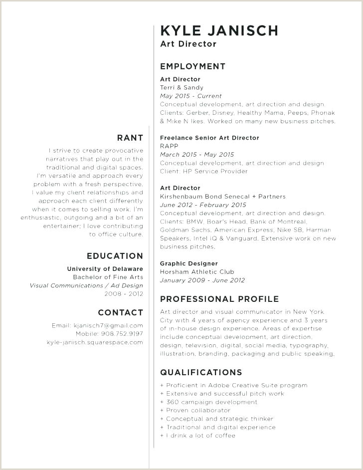 Marketing Pitch Example Marketing Campaign Pitch Template