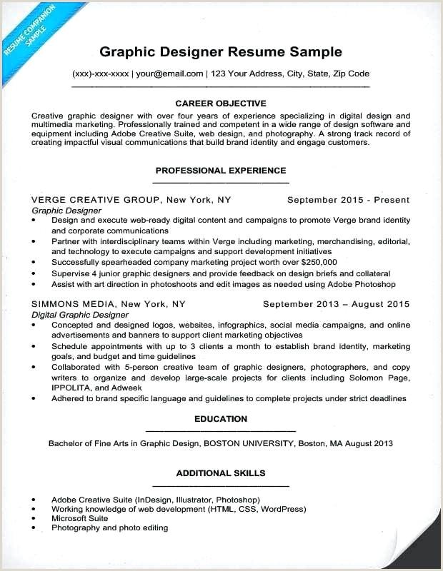 Attractive Best Resume Sample Resume Design