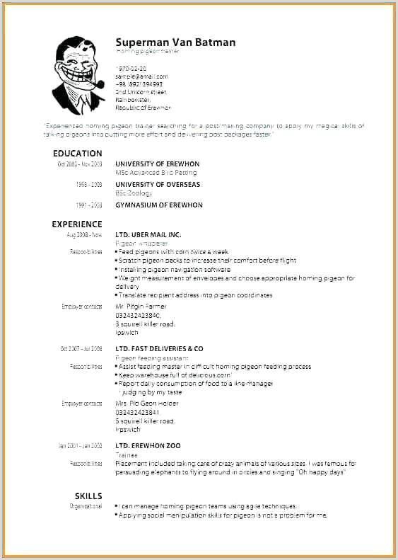 Therapist Resume Sample Sample Occupational therapy Resume