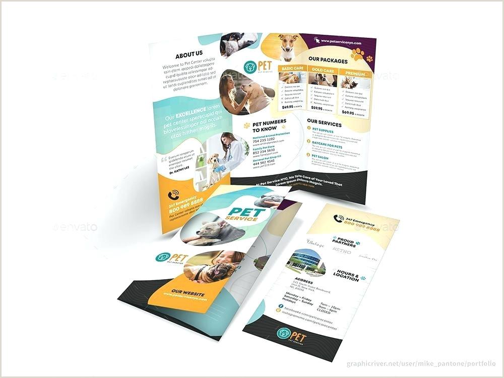 Medical Brochure Template Microsoft Word Flyer Templates Free – Arodz