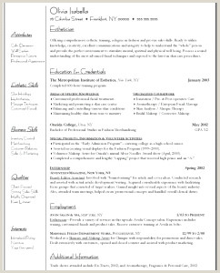 Esthetician Cover Letter Examples Lovely Sample Esthetician