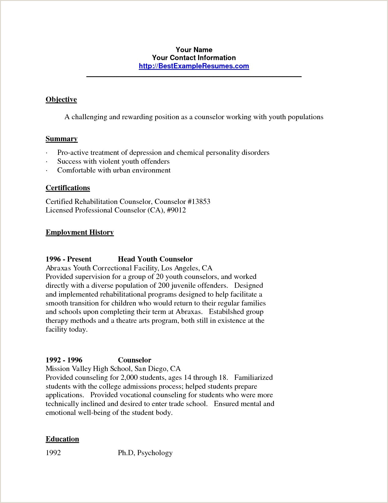 Mental Health Counselor Resume Objective Examples Camp