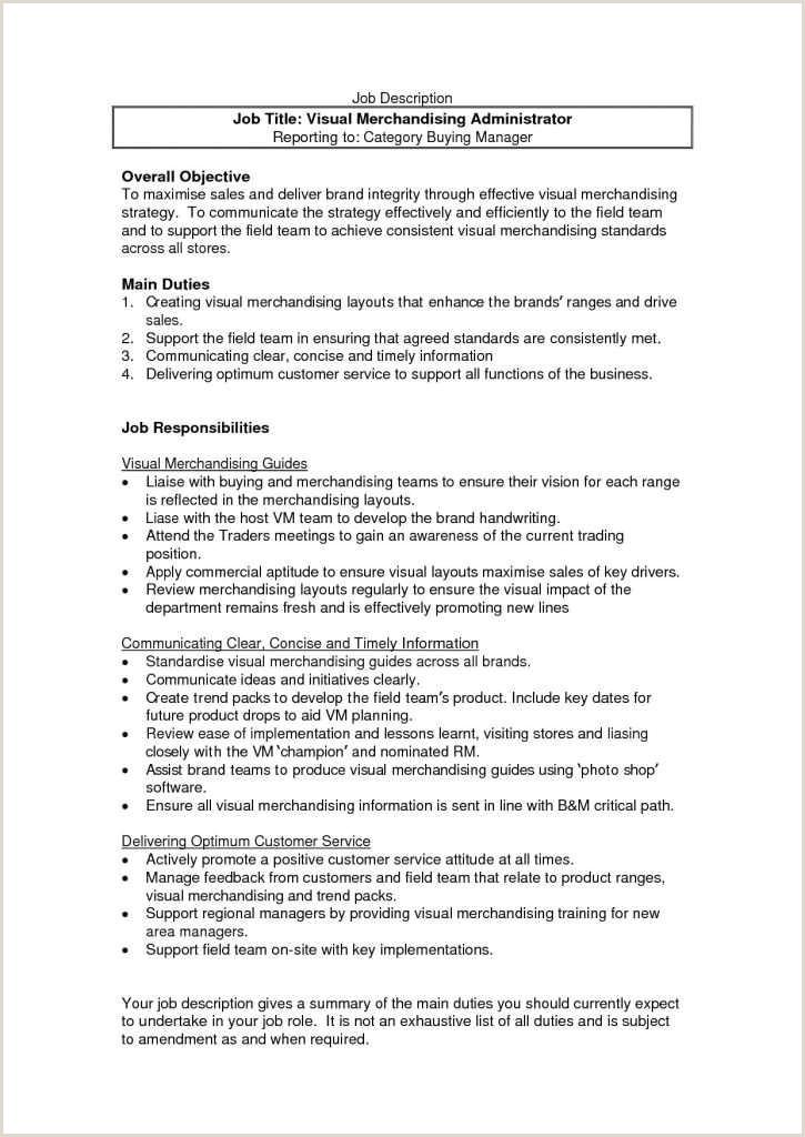 Merchandiser Job Description Resume Fresh Visual Merchandiser Job Description Resume