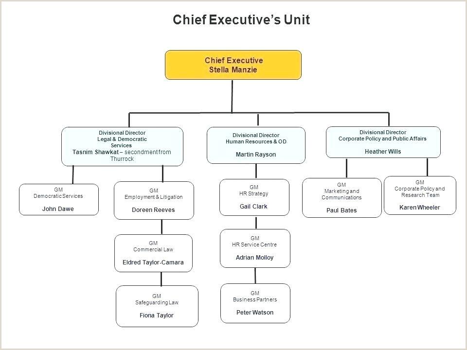 pany Organizational Chart Free Template Ms Word Org