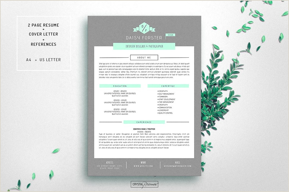 Microsoft Word Photo Collage Template Word Resume Template Mac Professional Resume Profile Samples