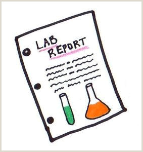 Middle School Science Lab Report Chemistry Lapbook Chemistry Help