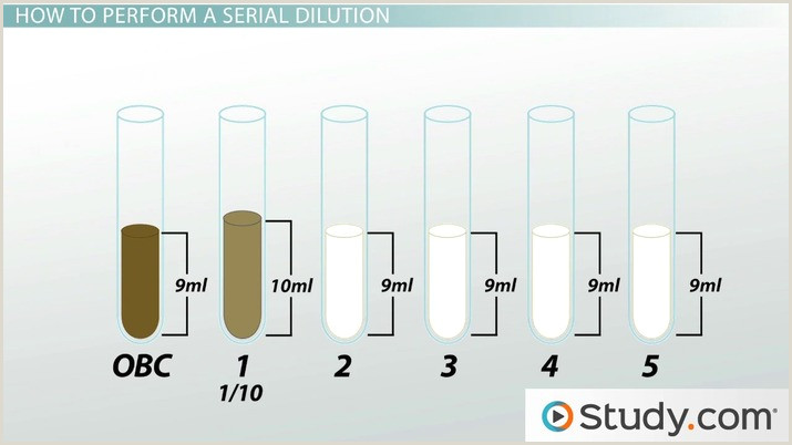 Serial Dilution in Microbiology Calculation Method