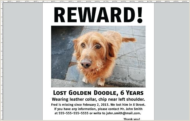 Lost Dog Flyer Template Found Flyers Poster Missing