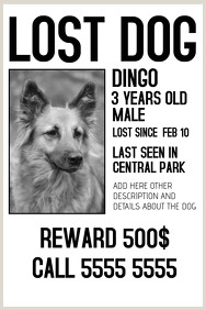 Photo of Missing Person Flyer Template