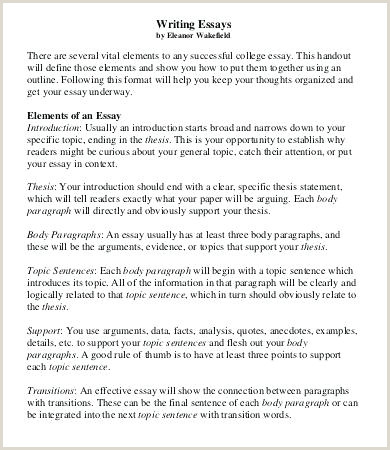 College Essay Format Template Writings And Essays 7 Free