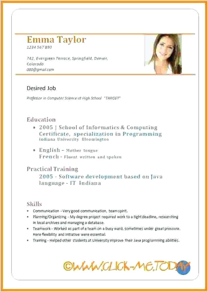 Curriculum Vitae Template Download 5 Examples Sample For