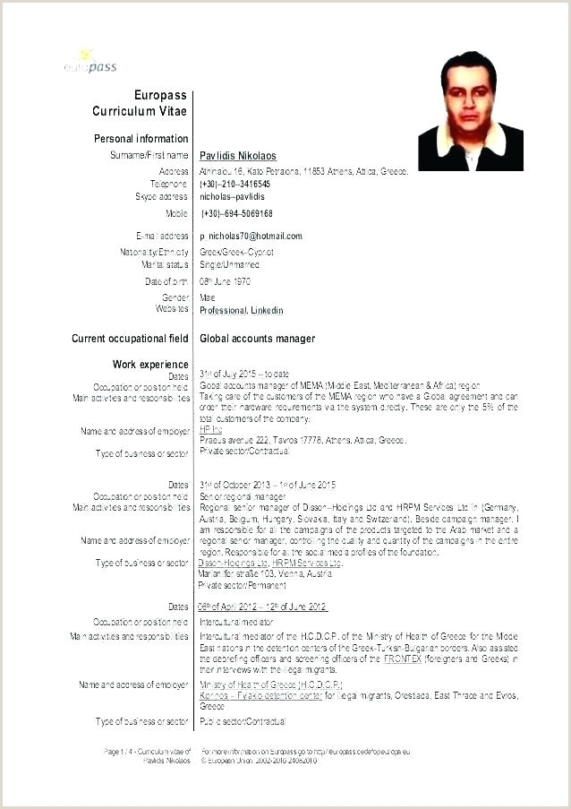 Model Cv Europass format Word Cv English Template