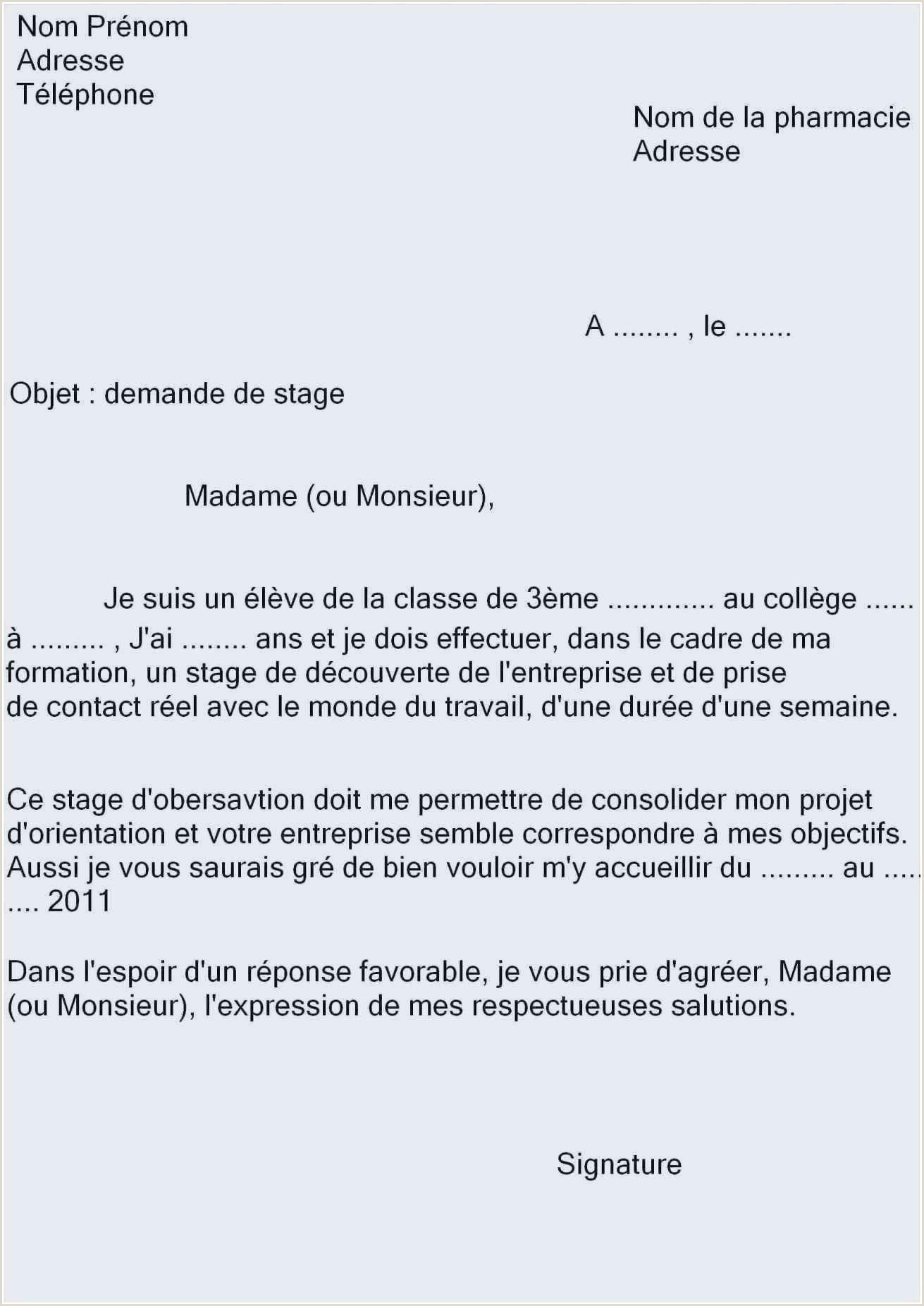 Exemple Cv Francais Simple Luxury Exemple Cv En Anglais