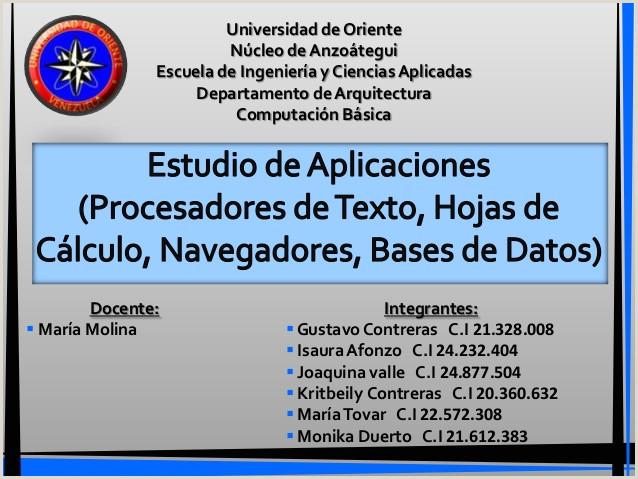 Modelo Actualizado De Hoja De Vida 2019 Procesadores De Texto Hojas De Calculo Navegadores Y Bases