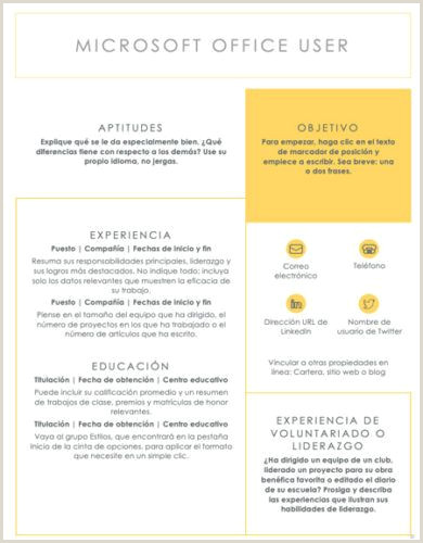 Modelos De Curriculum Vitae Para Rellenar ▷ Curriculum Vitae Plantilla Word
