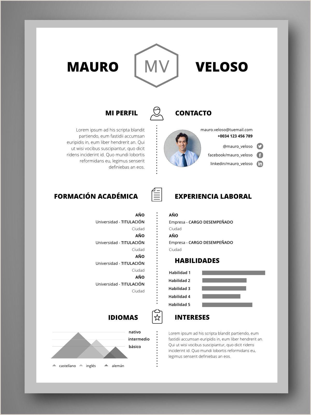 Modelos De Curriculum Vitae Para Rellenar Basico Currculum Berln Portafolio